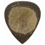Steve Clayton™ Exotic Pick: Coconut Shell, Standard, 3 Pieces