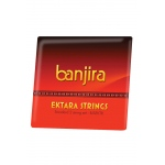 banjira Ektara 2-String Set Loop Ends